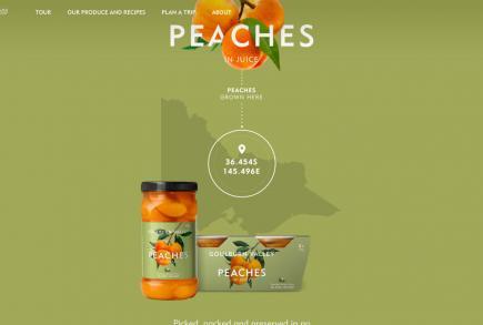 روشهای پرطرفدار استفاده از رنگ در طراحی وب سایت
