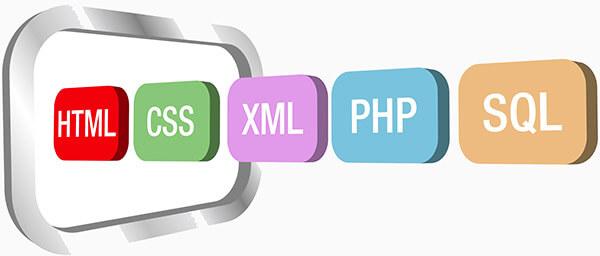 تفاوت بین زبان های برنامه نویسی وب